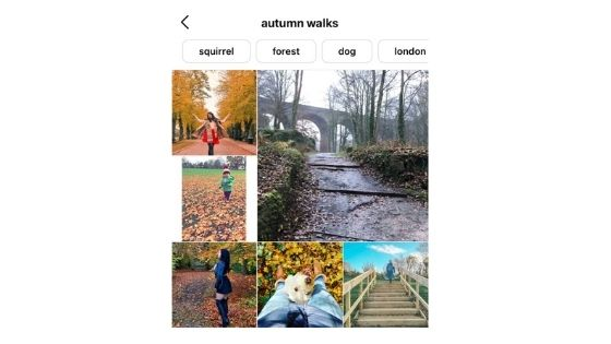 instagram search feature